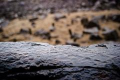 Sandbox (Daniel Kulinski) Tags: old city bridge autumn winter wet water rain dark mirror drops europe image daniel creative picture evil samsung poland warsaw imaging 1977 less nx nx200 kulinski daniel1977 samsungnx samsungimaging samsungnx200 danielkulinski