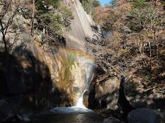PB243759 (karst) Tags: autumn japan walk autumncolors e30 yamanashi 2011 shosenkyo autumnwalk 1122mmf2835