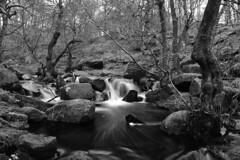 Waterfall in Black and White. (sidibousaid60) Tags: blackandwhite white motion black water stream photos derbyshire peakdistrict grindleford blackwhitephotos upperpadley