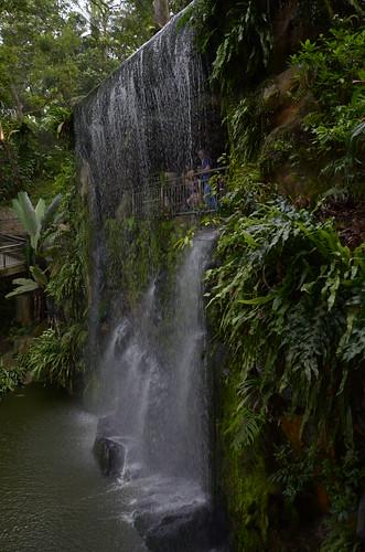 Artificial waterfall in the bird bark ©  Still ePsiLoN