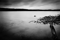 untitled landscape (Andreas Strauch) Tags: longexposure lake tree water see blackwhite wasser threepwood langzeitbelichtung baumstamm treibholz bostalsee schwarzweis leicam9 superelmar21mm