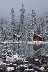 Rustic Cabins of Lake O'Hara Lodge in Snow (Lee Rentz) Tags: morni