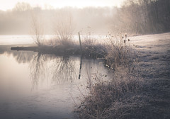 1/52 (skidu) Tags: morning lake water fog canon 50mm birmingham frost january week1 valley f2 relfections 2012 f20 sandwell canon50mmf14usm 550d 522012 weekofjanuary1 52weeksthe2012edition