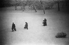 The Procession (batuda) Tags: winter snow d76 push om tmax100 kaunas kalnieciai rmctokina10030056