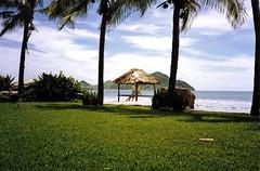 1990-Mazatlan Trip-El Cid's Park-Like Grounds-01 (David Cummings62) Tags: beach mexico hotel mazatlan vacations elcid davidcummings davecummings davidcummingsphotos davecummingsphotos