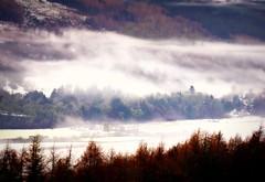 Strathtay(Mist and Snow) (eric robb niven) Tags: winter mist snow scotland woods dunkeld atholl strathtay