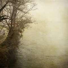 un tenue bagliore (* onda *) Tags: mist cold texture river alone sharing redmatrix