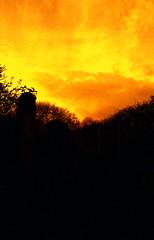 Orange (Saturated Imagery) Tags: red silhouette 35mm fire iso200 epson praktica v500 filmslr vivitar28mmf25 prakticatl5b lomographyredscalexr devlopedthephotoshop