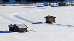 Winter im Pfitschtal (mikiitaly) Tags: schnee winter italy südtirol altoadige langlauf pfitschtal pfitsch ringexcellence elementsorganizer löipe