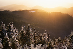 winter sun (Dennis_F) Tags: trees winter light sunset snow black forest licht sonnenuntergang sony sigma hills fullframe dslr 50 wald bume schwarzwald baum 50mmf14 hgel sigma50mm nachmittags sigmalens a850 festbrennweite sonyalpha sonydslr vollformat sigma5014 sigma50mmf14 sigmaobjektiv dslra850 sonya850 sonyalpha850 alpha850