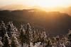 winter sun (Dennis_F) Tags: trees winter light sunset snow black forest licht sonnenuntergang sony sigma hills fullframe dslr 50 wald bäume schwarzwald baum 50mmf14 hügel sigma50mm nachmittags sigmalens a850 festbrennweite sonyalpha sonydslr vollformat sigma5014 sigma50mmf14 sigmaobjektiv dslra850 sonya850 sonyalpha850 alpha850