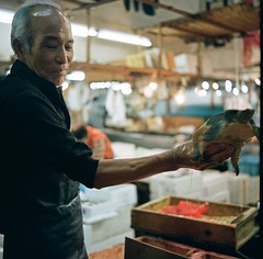 Tsukiji Fish Market - 築地市場 (jakobfuhr) Tags: fish japan tokyo market tsukiji fishmarket 築地市場