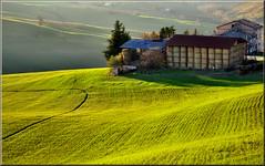 fienile (Luigi Alesi) Tags: winter italy verde green landscape nikon scenery san italia severino inverno marche paesaggio tolentino giuseppe macerata d90 sanseverino fantasticnature