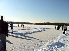 natural ice (Frerieke) Tags: winter iceskating sneeuw ijs schaatsen nootdorp natuurijs