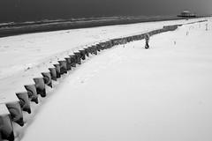 'l nevn! (carlocava) Tags: sea bw snow italia waves fuji pov bn neve bianconero senigallia 2012 carlocava fujix10
