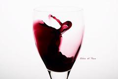 Ribera del Duero (kozumel) Tags: espaa glass 35mm contraluz studio spain nikon europe wine redwine february nikkor softbox febrero copa vino 2012 vinotinto 366 riberadelduero denominacindeorigen kozumel camiloruedalopez flickr:user=kozumel flickr:user=42962212n00 nikond7000 twitter:user=kozumel lastfm:user=kozumel web:site=kozumelinfo flickr:userid=42962212n00 twitter:username=kozumel dopplr:traveller=kozumel flickr:userid=kozumel camiloruedalpez