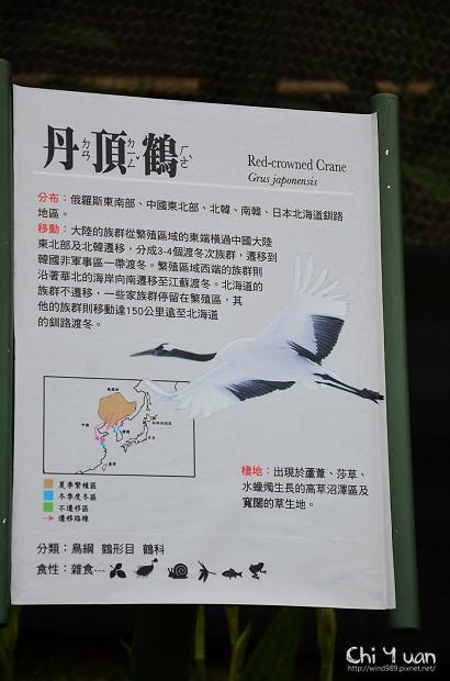 木柵動物園鳥園14.jpg
