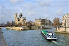 Paris : Notre Dame / Ile de La Cit (Pantchoa) Tags: bridge paris saint seine notredame pont saintlouis nikkor le ledelacit f3556 pontdelarchevch mmorialdesmartyrsdeladportation saintlouisbridge nikonpassion nikonflickraward memorialtothemartyrsofthedeportation pantchoa ringexcellence louispnichebargetournellesquai dorlansnikond901685mm