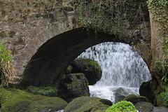 Light at the end of the Tunnel (VelvetJones_) Tags: bridge water waterfall moss rocks ivy glen archway rouken