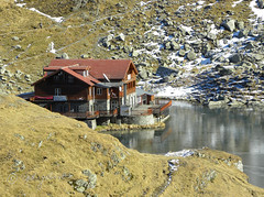Chalet near Blea Lake in the Fgra Mountains (cod_gabriel) Tags: lake frozen lac romania chalet carpathians roumanie fagaras balea transfagarasan romnia caban carpathianmountains lakebalea fogarasi transfgran fgra carpai muniicarpai blea fogarasihavasok transzfogarasi blealac ngheat transzfogarasit transfogarascher fgragebirge fogaraschergebirge fogarascher transfogarascherhochstrase