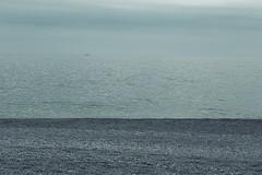 """""""Pi veloci di aquile i miei sogni  attraversano il mare"""" (_thethinredline_) Tags: sea seaside dreams rule thirds sogni terzi regola"""