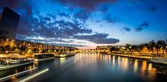 DSC_2668 (Daniel.L.B.Photography) Tags: paris seine night nikon dusk rivire d750 pont bercy nuit fleuve impt