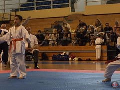 stefanou_15_5_2016_knockdown_155