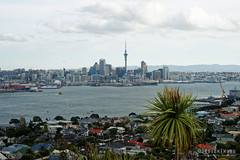 20160503-08-View from Mt Victoria (Roger T Wong) Tags: city travel newzealand skyline hill auckland nz devonport mtvictoria 2016 sony2470 rogertwong sel2470z sonyfe2470mmf4zaosscarlzeissvariotessart sonya7ii sonyilce7m2 sonyalpha7ii