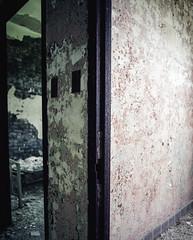 (Stevelb123) Tags: abandoned mamiya hospital mediumformat insane kodak decay urbandecay 120film urbanexploration decrepit asylum derelict psychiatric psychiatrichospital insaneasylum urbex kodakfilm statehospital abandonedhospital kodakportra400 kodakportra mediumformatfilm mamiyarz67 120rollfilm urbanexplorer kodakportra160 mamiyarz67proii mediumformatphotography mamiyarz67pro abandonedexploration