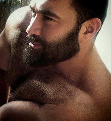 1185 (rrttrrtt555) Tags: hairy muscles hair beard outdoors arms masculine chest lounge squint leaning