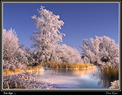 Ice Age .... (Explore) (Peter Roder) Tags: blue winter sky lake snow tree ice nature water clouds hoarfrost galleryoffantasticshots