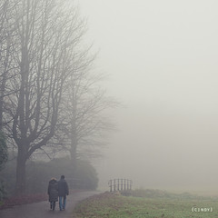 bridge to the unknown ({cindy}) Tags: bridge family november autumn trees mist holland fall netherlands fog canon square couple