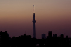 Skytree and sunset,Tokyo,Japan (flaminghead Park) Tags: sunset sky tower nature japan horizontal architecture outdoors photography tokyo horizon nopeople japaneseculture lookouttower tokyoprefecture capitalcities traveldestinations colorimage sumidaward flaminghead builtstructure tokyoskytree