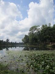 Srimongal (Sarkerbot) Tags: srimongal