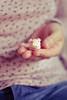 baby pig ♥ (Natália Viana) Tags: cute miniatura bichinhos oinc porquinho natáliaviana