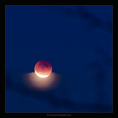 "lunar eclipse/ ""moon over a pillow "" :-) (stella-mia) Tags: norway luna hamar lunareclipse 70200mm 400mm extenderef2xii totallunareclipse mneformrkelse hedmarkstoppen canon5dmkii theredmoon totallunareclipse2011 annakrmcke krmcke december102011 totallunareclipsedecember102011 mneformrkelse10desember2011"