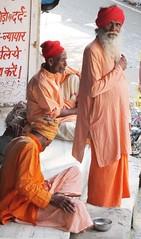 Hindistan-Riike (ilyas yldz) Tags: india cows delhi agra monkeys hindu amritsar goldentemple rishikesh hindistan maymun inek sih tacmahal altntapnak