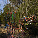 360_Trees_2011_145