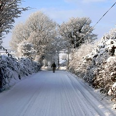 White Christmas Ireland (murtphillips) Tags: christmas martin phillips 2010 mygearandme rememberthatmomentlevel1
