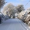 White Christmas Ireland (murtphillips) Tags: christmas martin phillips 2010 mygearandme rememberthatmomentlevel1