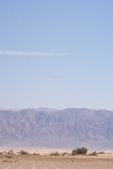 Cranes migrating over Jordan mountain from Lotan Kibbutz 18.10.11 (Ed Drewitt) Tags: autumn mountains israel desert families jordan migration commoncrane grusgrus