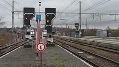 L43  - ANGLEUR (philreg2011) Tags: train trein nmbs angleur sncb signallumineux l43