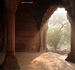 Curtain of Light & Shadows (Ragstatic) Tags: world morning light shadow red mist tree heritage monument fog shadows fort unesco rays beams treeoflife redfort