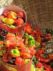 Chilli by the dozen, Serrekunda market, The Gambia
