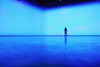 (atomareaufruestung) Tags: blue autumn shadow oktober man reflection berlin colors silhouette sport azul speed studio person october skateboarding herbst skateboard jeffrey balance trick skateboarder pushing 2011 cruisingaround gettygermanyq4