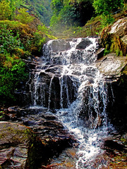 Rock Garden Waterfall, Darjeeling (sir_watkyn) Tags: india west rock canon garden waterfall interestingness ixus 230 bengal darjeeling himalayas hs abigfave anawesomeshot colorphotoaward impressedbeauty flickrdiamond natureselegantshots sirwatkyn