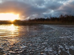 (evisdotter) Tags: morning light sky sun ice beach reed nature water sunrise reflections landscape sunny mariehamn land vass lillaholmen