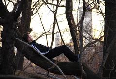 Nature: The Theme Park | Central Park Woods (MichaelTapp) Tags: park new york nature delete10 delete9 delete5 delete2 woods delete6 delete7 central delete8 delete3 delete delete4 theme delete11 deleet8 deletedbythehotboxuncensoredgroup