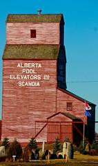 Grain Elevator - Scandia, Alberta (john.egan) Tags: pool wheat elevator grain alberta scandia