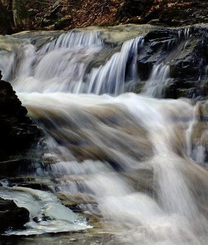 Worlds End State Park Reviews, Tips & Activities | Park Visitor™